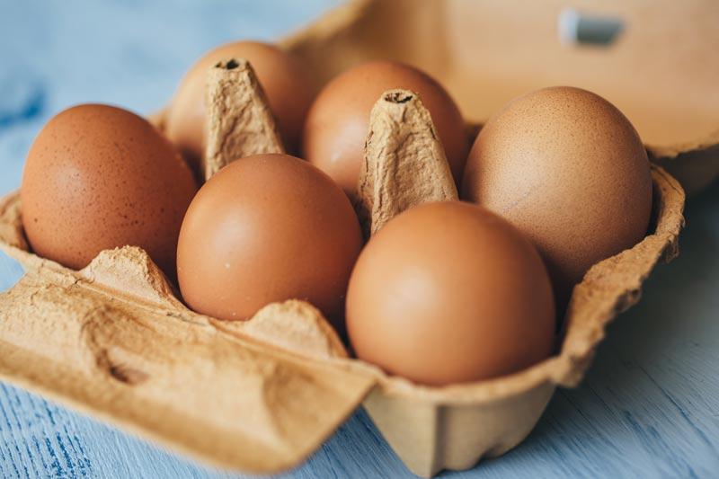 conservação de ovos